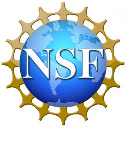 nsf_02